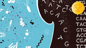 Введение в биоинформатику: метагеномика